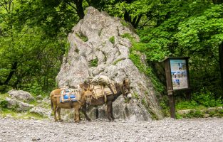 Trekking-Paklenica | Raftrek Adventure Travel Croatia